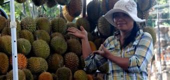 Belum Musim, Harga Durian Meroket